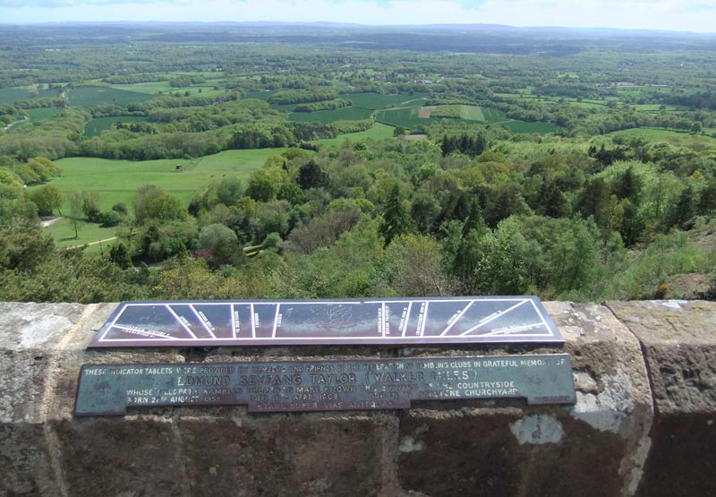 View from the Tower at Leith Hill